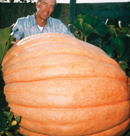 Dill's Atlantic Giant Pumpkin