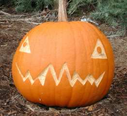 Tri Eye Pumpkin ,  Nipomo Pumpkin Patch, carving idea