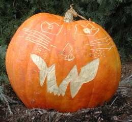 Big Cat Pumpkin ,  Nipomo Pumpkin Patch, carving idea
