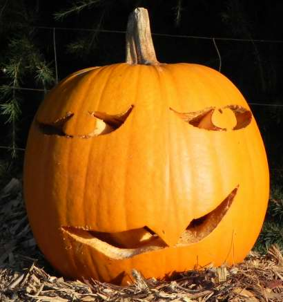 Single tooth, Nipomo Pumpkin Patch, carving idea