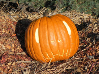 Pumpkin 2, Nipomo Pumpkin Patch best carving idea