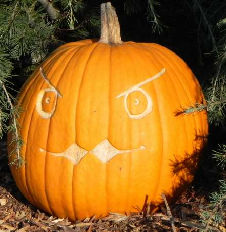 Beaky, Nipomo Pumpkin Patch, carving idea