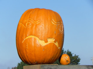 Wavie, Nipomo Pumpkin Patch best carving idea