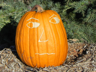 Over There, Nipomo Pumpkin Patch carving idea