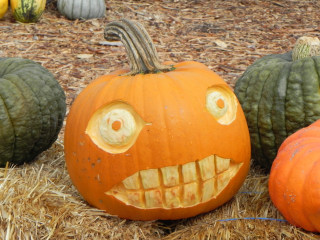 Big teeth, Nipomo Pumpkin Patch carving idea