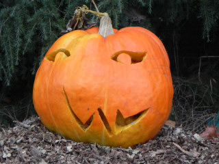 Usual, Nipomo Pumpkin Patch carving idea