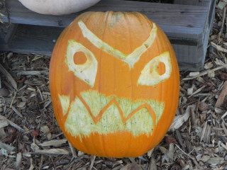 Watch It's Friend, Nipomo Pumpkin Patch carving idea