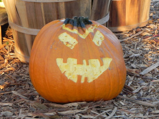 Watch It's Other Friend, Nipomo Pumpkin Patch carving idea