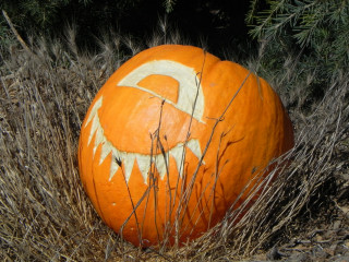 Happy Eye, Nipomo Pumpkin patch carving idea