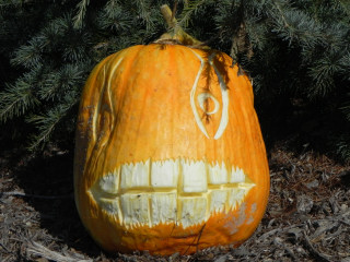 Big Teeth, Nipomo Pumpkin Patch best carving idea