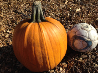 Nipomo Pumpkin Patch carver 15
